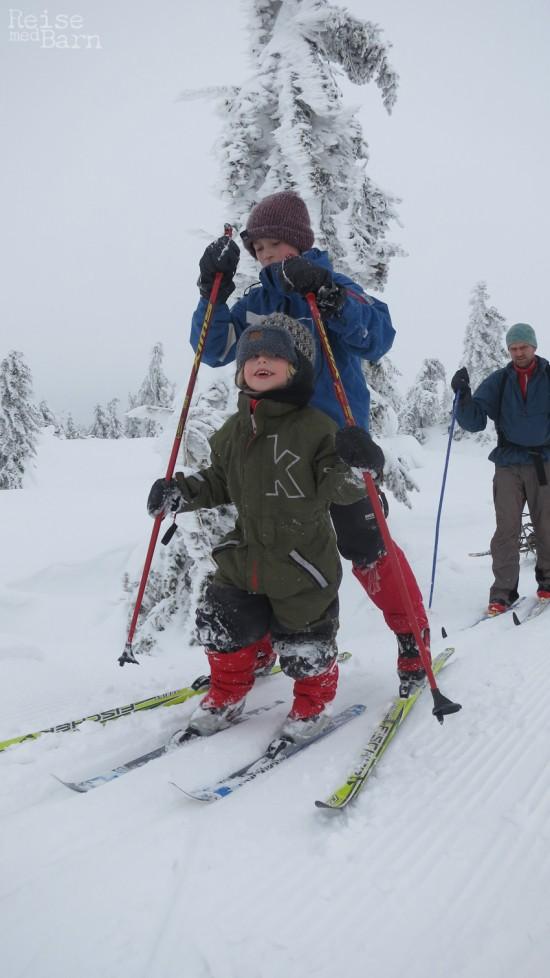 Skitrening
